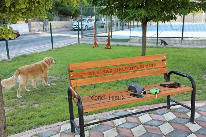 Hayvanseverler Bu Parkı Çok Sevdi