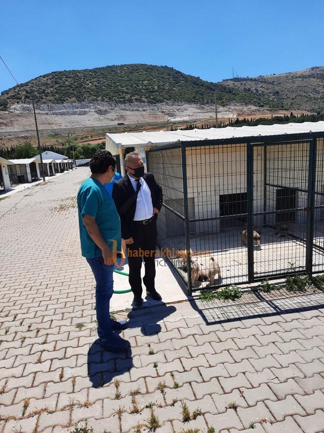 Akhisar Hayvan Barınağına Ziyaret