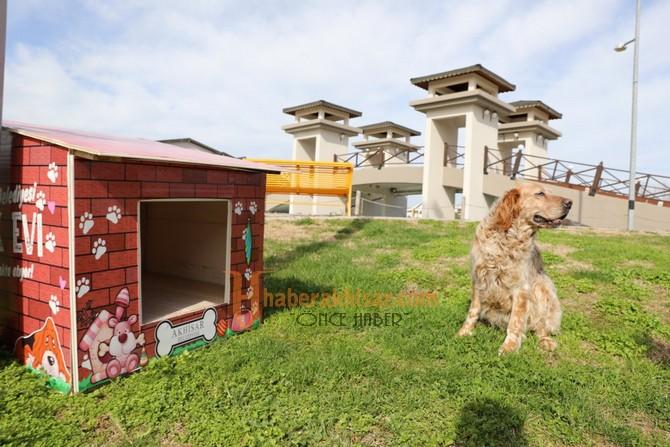 Atık Malzemeler, Sokak Hayvanlarına Sıcak Yuva Oldu