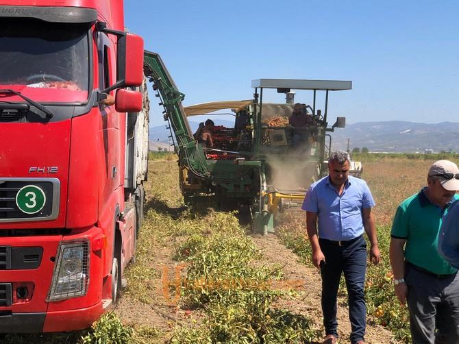 Çiftçilerimizin Bayramı Olan Hasatlar Başladı
